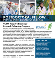 Keegstra fellowship program flyer thumbnail
